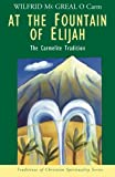 At the Fountain of Elijah: The Carmelite Tradition (Traditions of Christian Spirituality.)