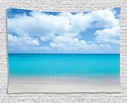 Ambesonne Ocean Decor Collection, Solitude Peaceful Beach Scene With Blue Ocean And Cloudy Sky, Bedroom Living Room Dorm Wall Hanging Tapestry, 80W X 60L ()