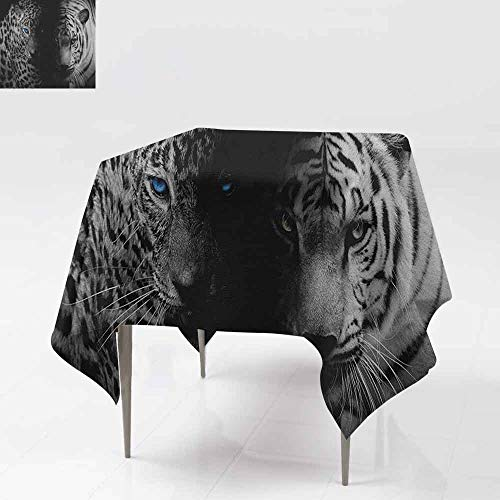 DUCKIL Polyester Tablecloth Leopards with Blue Eyes Aggressive Powerful Wildcat Profile Print Soft and Smooth Surface W63 xL63 Black White Blue