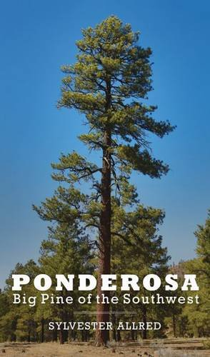 Ponderosa: Big Pine of the ()