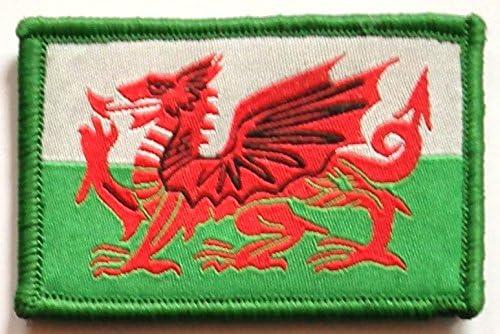 Coser y velcro (estilo de la fuerzas armadas) parche bordado con insignia de bandera de Gales diseño de dragón galés Cymru: Amazon.es: Hogar