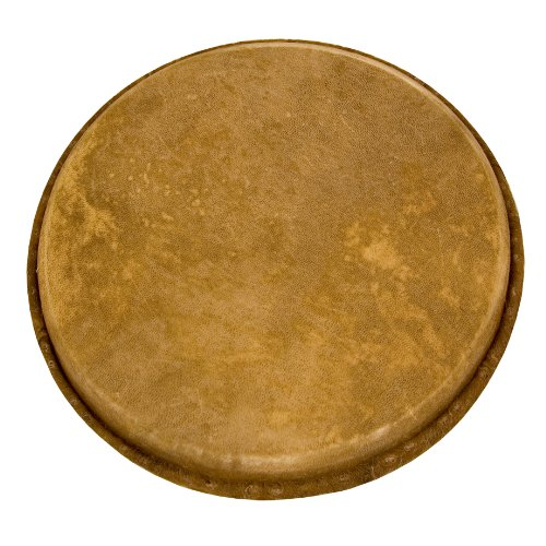 Tycoon Percussion Natural Unbleached Goatskin Head For 11 Inch Djembe TDD-RHDJM11