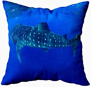 Musesh Pillow Cases Standard Size, Decorative Zip Pillow Cover Whale Sharks Swimming Blue Waters Mexico Mujeres 16X16Inch for Sofa Home Holiday Pillow Covers