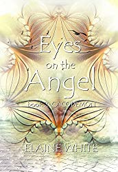 Eyes on the Angel (Cacodemon Book 2)
