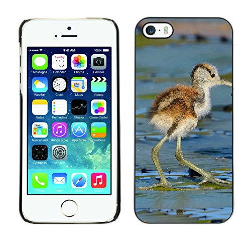 Premio Sottile Slim Cassa Custodia Case Cover Shell // F00012116 petit oiseau // Apple iPhone 5 5S 5G
