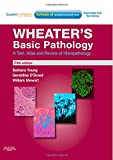Basic Pathology 5th Edition