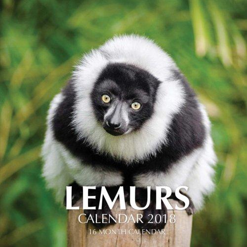 Lemurs Calendar 2018: 16 Month Calendar