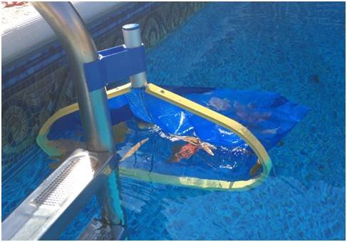 Leaf Bone - Leaf Net Skimmer Clip, Pool Net Ladder Attachment (Net Sold Separately), Automatic Pool Cleaner, Collects More Than Skimmer ()