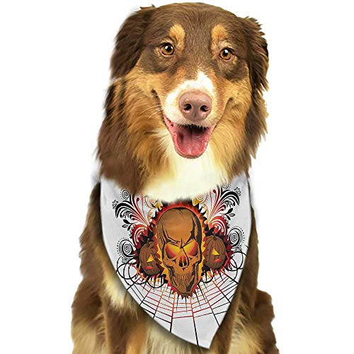 Cute pet Scarf Halloween Angry Skull Face on Bonfire Spirits of Other World Concept Bats Spider Web Design W27.5 xL12 Scarf for Small and Medium Dogs and Cats