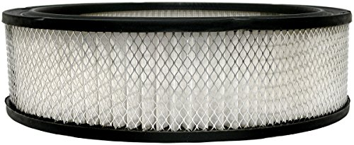 Luber-finer AF348 Heavy Duty Air Filter for sale  Delivered anywhere in USA