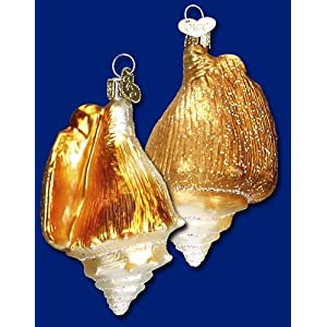 51IcfHHRrPL._SS300_ 100+ Best Seashell Christmas Ornaments