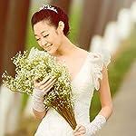 Silk-Flowers-12pcs-Artificial-Flowers-Gypsophila-Decorative-Fake-Silk-White-Bride-Biouquet-Wedding-Decoration-Tropical-Mint-Yellow-Purple-Brown-Necklace-Spray-Vase-Hanging-Decoration-R