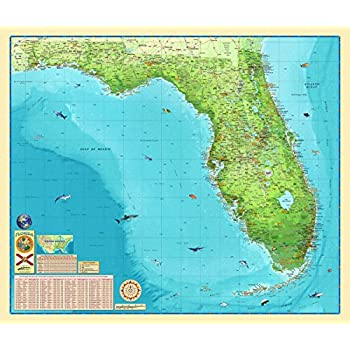 Physical Map Of Florida.Amazon Com Gifts Delight Laminated 28x24 Poster Physical Map