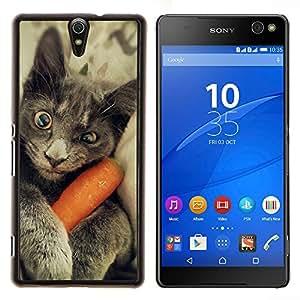 YiPhone /// Prima de resorte delgada de la cubierta del caso de Shell Armor - Chartreux gato azul ruso divertido gatito - Sony Xperia C5 Ultra