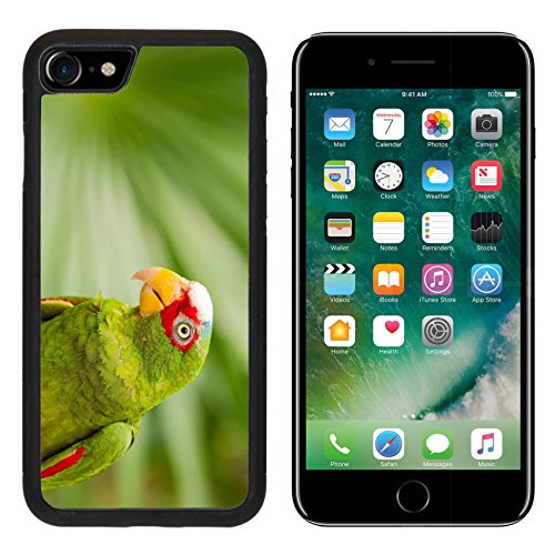(Liili iPhone 7 Case and iPhone 8 Case Silicone Bumper Shockproof Anti-Scratch Resistant Tempered Glass Hard Cover IMAGE ID: 27831659 Portrait of colorful White fronted Parrot in Mexico )