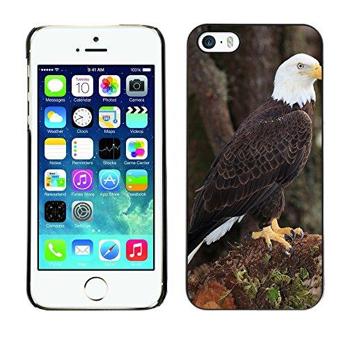 Premio Sottile Slim Cassa Custodia Case Cover Shell // F00008831 Aigle chauve // Apple iPhone 5 5S 5G