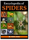 Encyclopedia of Spiders