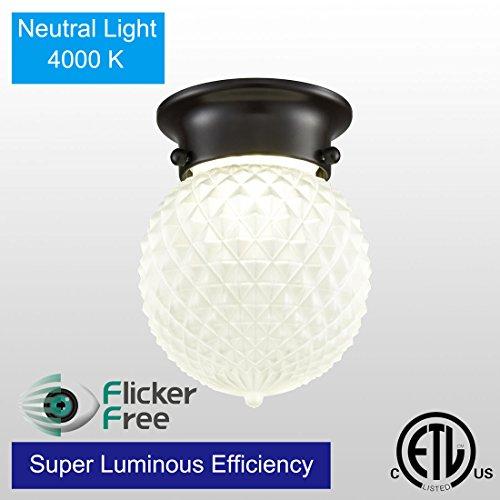 AXILAND Industrial Antique Plantation Collection Flush Mount LED Ceiling Light,8W 680LM 4000K Neutral Light,Prismatic Glass Globe