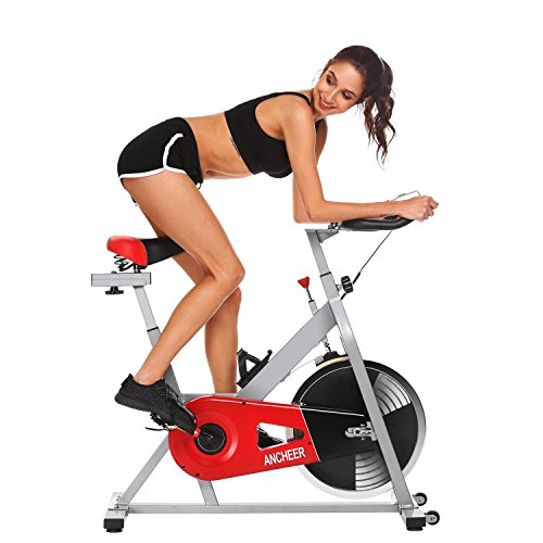 Indoor Fitness Exercise Bike Belt Resistance Exercise Cycling, Stationary Spin Bike for Home [US Stock] (2) Ferty