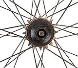Park Tool FR-6 Bicycle Freewheel Tool - Fits
