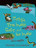 Tortoise, Tree Snake, Gator, and Sea Snake, Brian P. Cleary, 1467703419