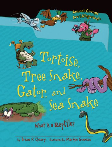 Tortoise, Tree Snake, Gator, and Sea Snake: What Is a Reptile? (Animal Groups Are - Colour Tortoise What A Is