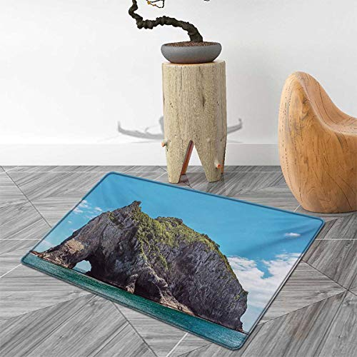 Beach Bath Mats for Bathroom Famous Elephant Shape Rock with The Grand Hole in Bay of Islands Nz Cavern Peaceful Door Mats for Inside Non Slip Backing 2'x3' Blue Grey - Grand Sofa Knife
