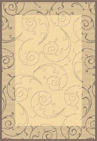- Transitional Rug - Courtyard Polypropylene -Natural/Brown Natural/Brown/Transitional/11'L x 8'W/Rectangle