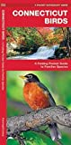 Connecticut Birds: A Folding Pocket Guide to Familiar Species (A Pocket Naturalist Guide)