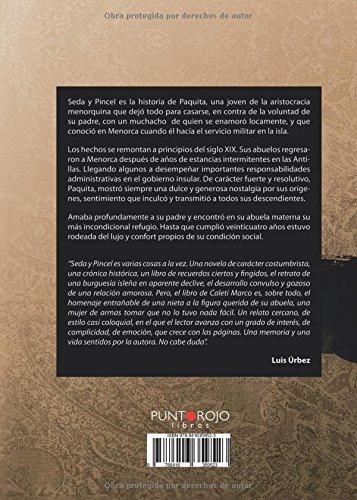 Seda y Pincel: Amazon.es: Marco Álvarez, Carmen: Libros