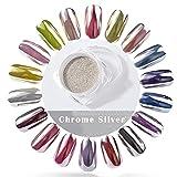 PrettyDiva 5g Silver Chrome Nail Powder, Rose Gold Effect Mirror powder Manicure Pigments