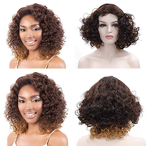 Short Curly Wigs for Black Women Fluffy Wavy Ombre Brown to Blonde Afro Synthetic Hair Wig Natural Looking Costume Wigs Heat -