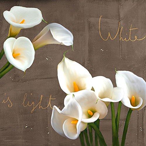 Posterazzi Collection White Callas Poster Print by Teo Rizzardi (12 x 12)