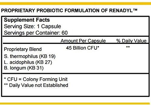 Renadyl (Formerly Named Kibow Biotics) for Kidney Health (60 Caps = One Month Supply) Brand: Kibow Biotech