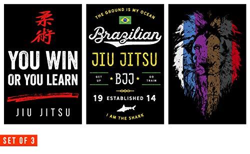 Jiu Jitsu Poster, Set of 3, 11 x 17 Inches, BJJ Wall Art, Full Color, Set of Posters for Brazilian Jiu Jitsu by Damdekoli