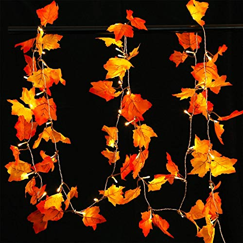 AOSTAR Thanksgiving Decorations Fall Lights 20 LEDs Lighted Fall Garland for Holiday, Party, Fall Events (Warm White)