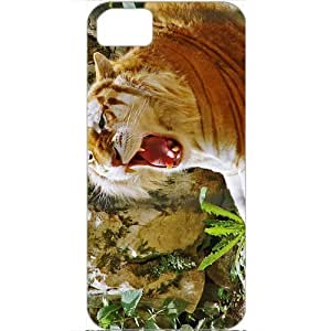 DIY Apple iPhone 5S Case Customized Gifts Personalized With Animals golden tiger hdtv 1080p Animals Birds Tigers...