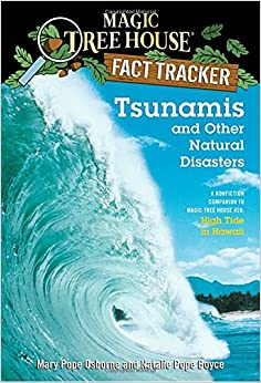 Amazon.com: Tsunamis and Other Natural Disasters: A Nonfiction ...