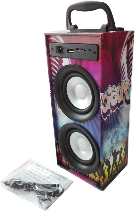Altavoces Portatil Reproductor MP3 FM Micro SD con Puerto USB Entrada para microfono Karaoke (Modelo 1)