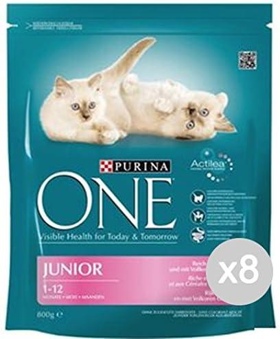 Purina Juego 8 One Gato Croccantini 800 Junior Pol/CER Comida para Gatos: Amazon.es: Productos para mascotas