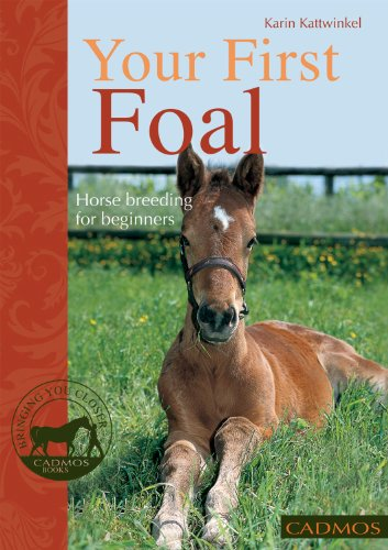 Your First Foal: Horse Breeding for Beginners (Bringing You Closer)