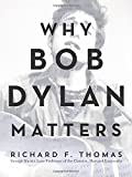 img - for Why Bob Dylan Matters book / textbook / text book