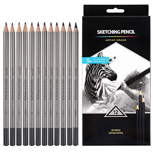 Professional Drawing Sketching Pencil Set - 12 Pieces Drawing Pencils 10B, 8B, 6B, 5B, 4B, 3B, 2B, B, HB, 2H, 4H, 6H Graphite Pencils for Beginners & Pro - Graphite Design Pencil
