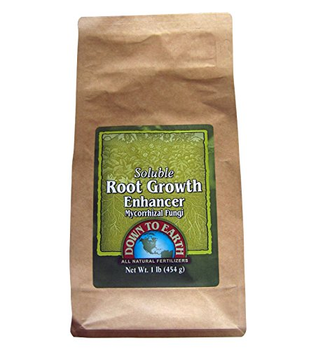 [Down To Earth 1 lb. Soluble Root Growth Enhancer Mycorrhizal Fungi] (Growth Enhancer)