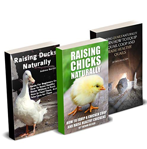 Homesteading Birds Farm: How To Raise Ducks, Chickens, And Quails On Your Farm by [Ollsen, Trevor]