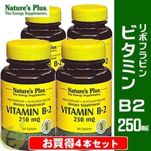 ビタミンB2 250mg (リボフラビン) 【お買得4本セット】 B00KL3M1EO