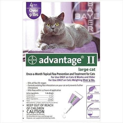 Amazon.com: 4PK Purp Advantage II: Mascotas