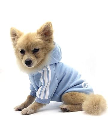 2137dd6885547 Amazon.fr   Pull-overs - Textiles et accessoires   Animalerie