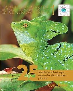 La vida silvestre en Centroamerica 1: 25 animales asombrosos que viven en las selvas tropicales