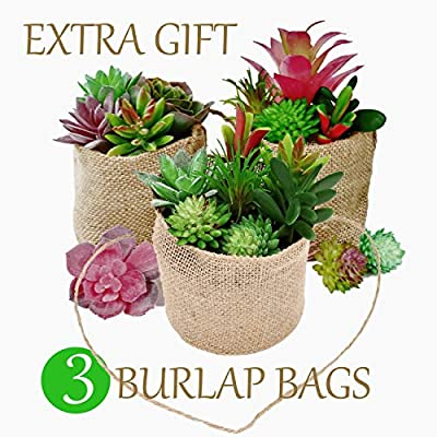 UNQUER Artificial Succulents Unpotted Mini Plants – 19PCS for Perfect Mini Greenery Set-Including 3 Burlap Bags, Faux Assorted Small Bulk Flowers, Mixed Plastic Fake Realistic Hanging Decoration